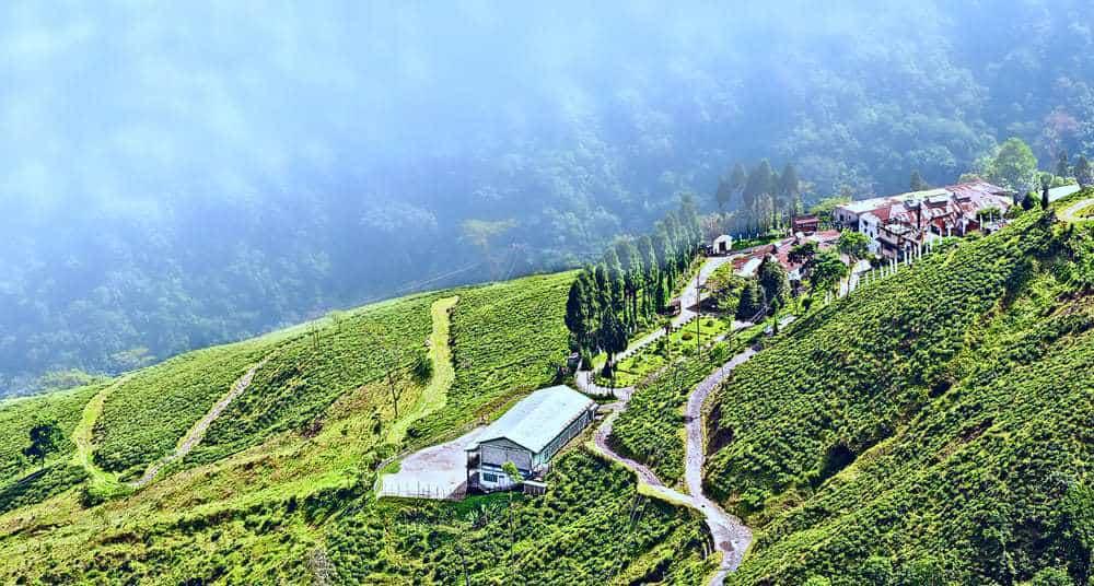 Darjeeling tea - View from Darjeeling city, Queen of Hills, Tea plantation garden, fog rolling down from hill