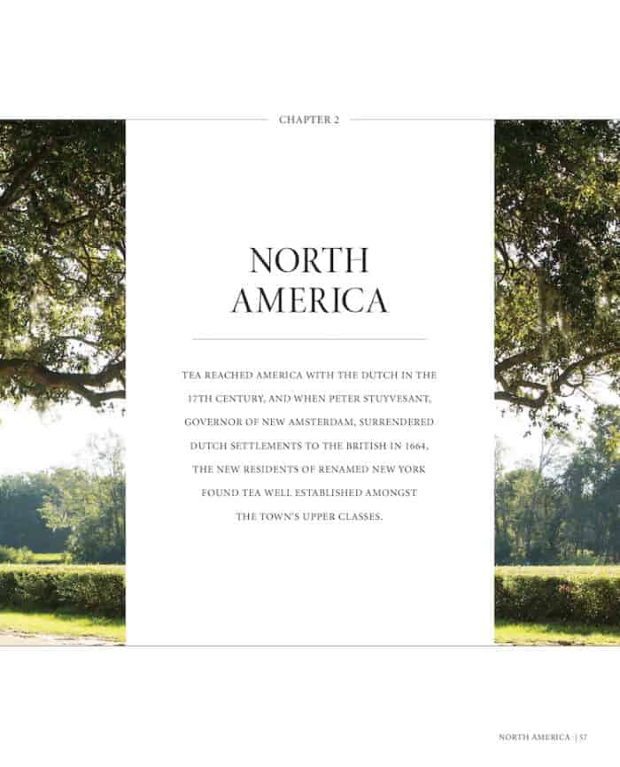 World of Tea In North America book chapter page tea book giveaway