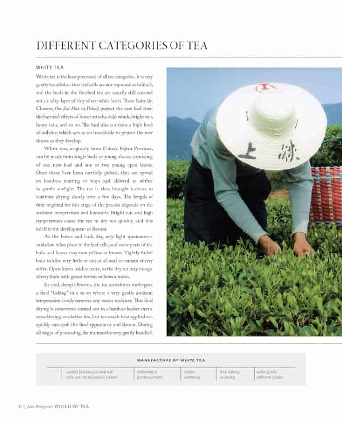 World of Tea categories on page of tea book giveaway