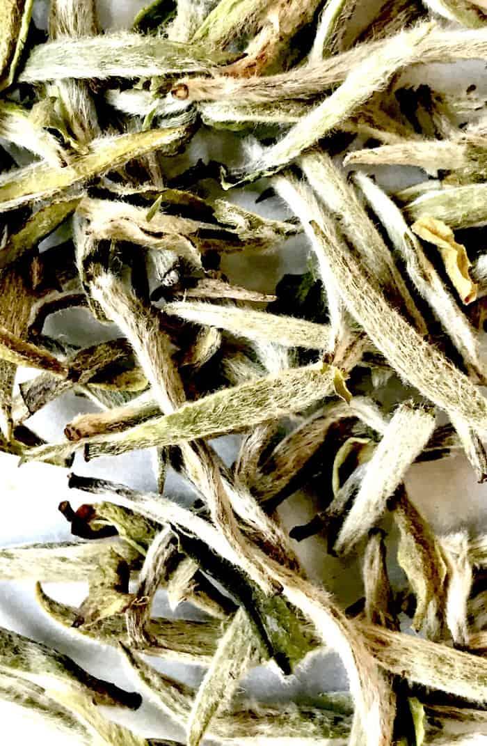 Silver Needle white tea buds