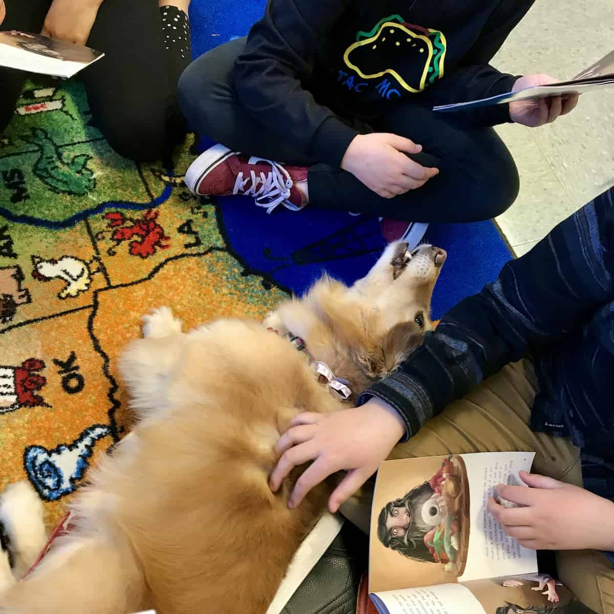 Maya in the read to the dogs program as a way to reduce stress. Children petting and reading to the dog.
